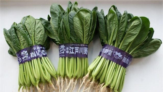 東京アグリパーク 給食用野菜